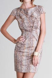 SNAZZY CHIC BOUTIQUE Python Peplum Dress - Product Mini Image