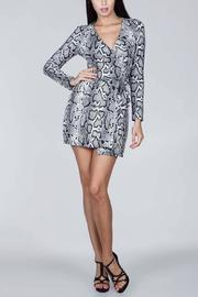 SNAZZY CHIC BOUTIQUE Snake Print Dress - Front cropped