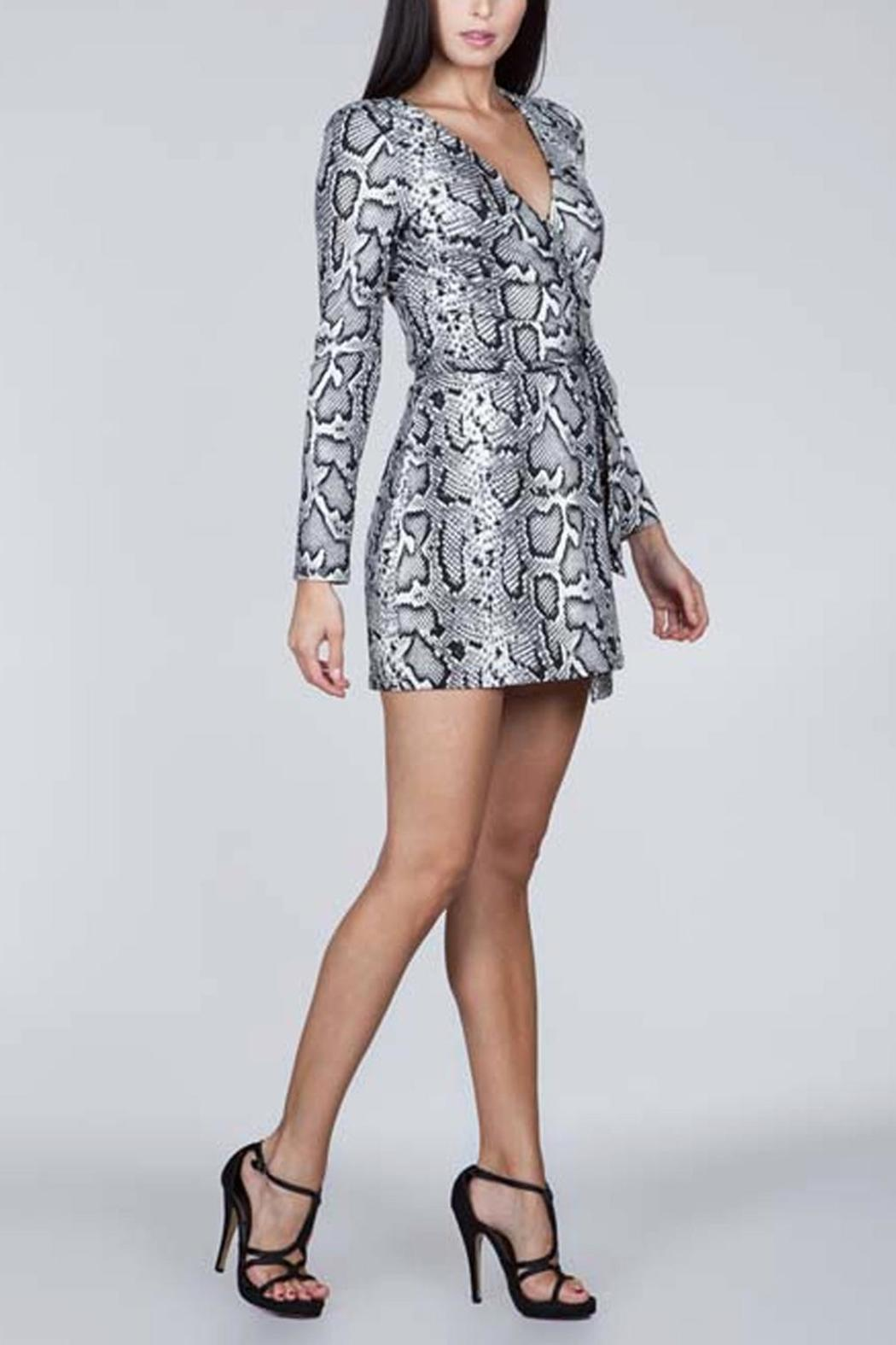 SNAZZY CHIC BOUTIQUE Snake Print Dress - Front Full Image