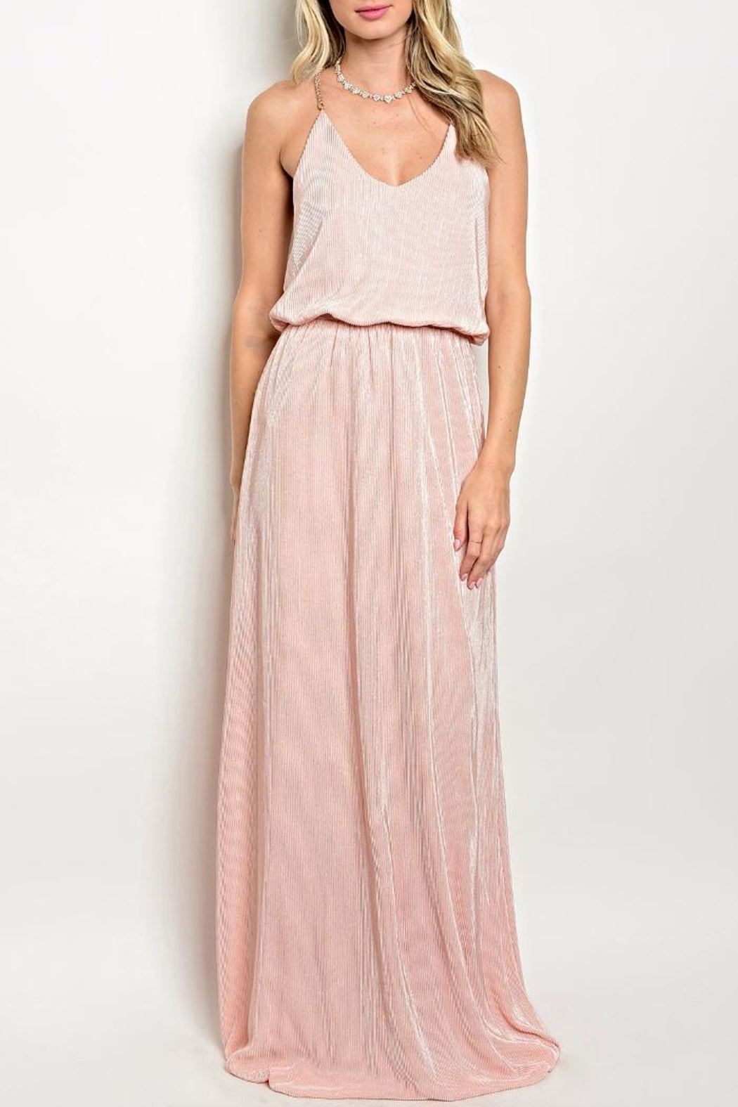 Soieblu Blush Long Maxi - Front Cropped Image