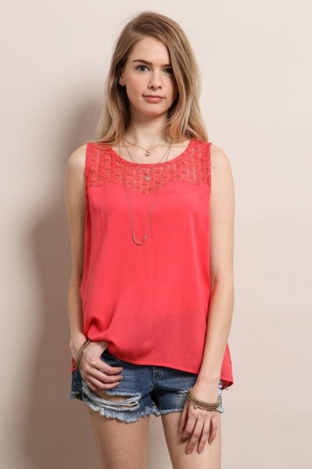 Soieblu Chiffon Embroidered Top - Front Cropped Image