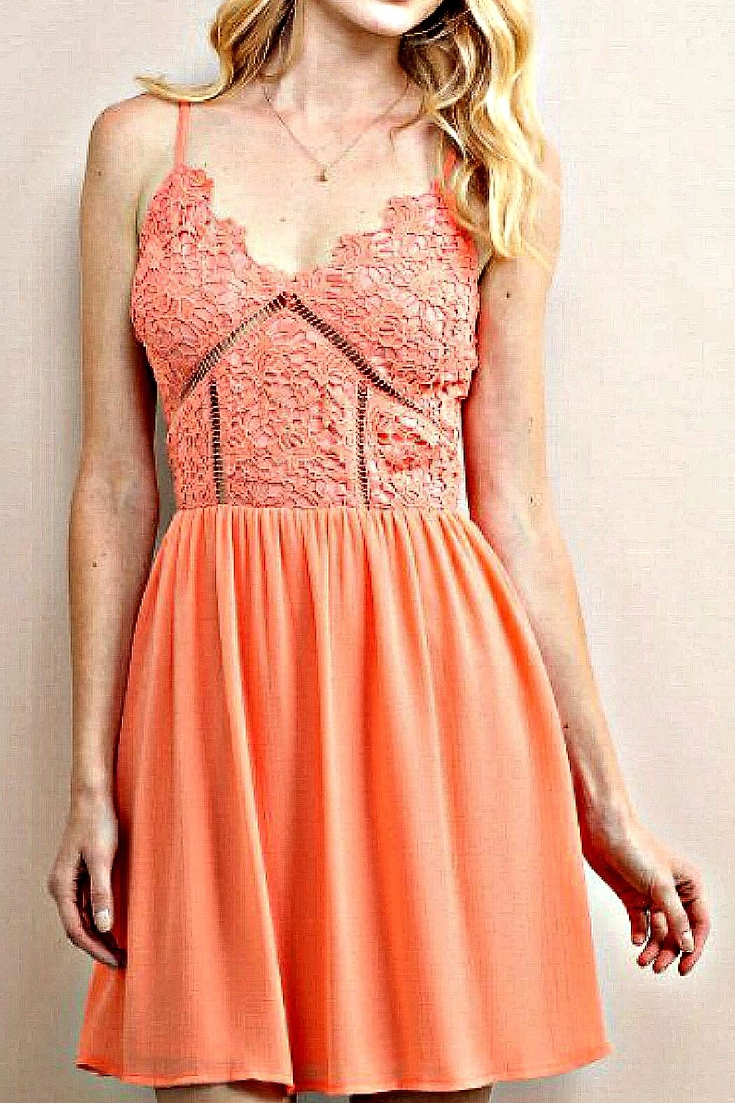 Soieblu Coral Floral-Lace Dress - Front Cropped Image