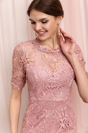 Soieblu Dusty Rose Lace Dress - Product Mini Image