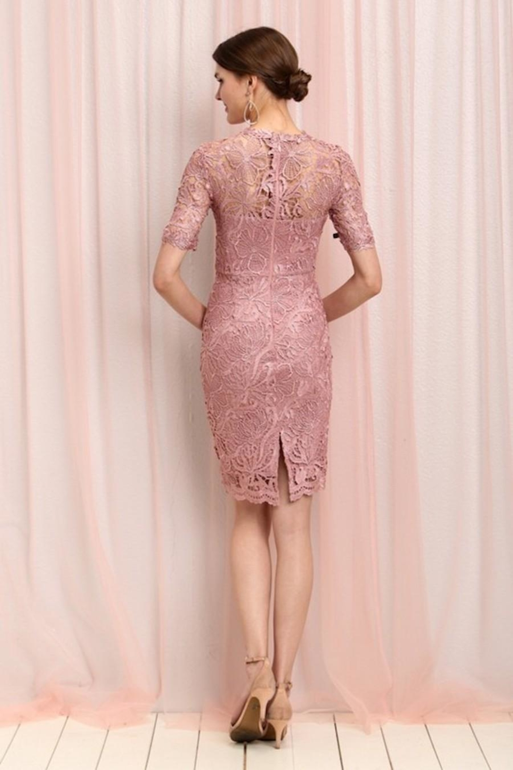Soieblu Dusty Rose Lace Dress - Side Cropped Image