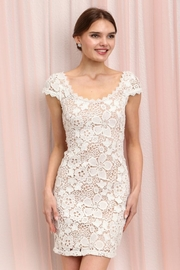 Soieblu Ivory/nude Crocheted Dress - Product Mini Image