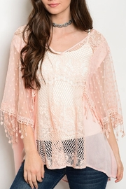 Soieblu Peach Mesh Top - Front cropped