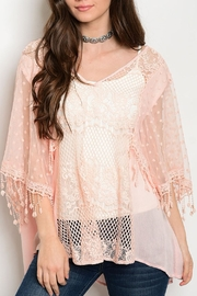 Soieblu Peach Mesh Top - Product Mini Image