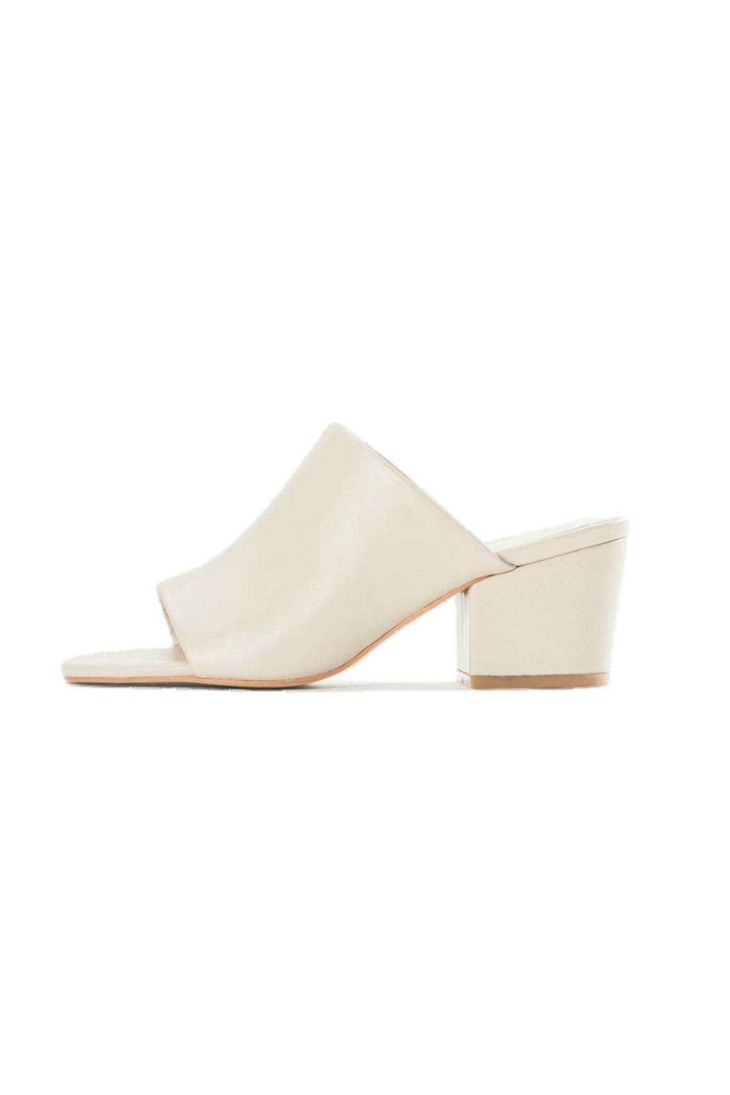 SOL SANA Leather Mule - Front Cropped Image