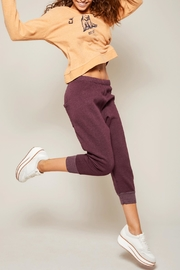 All Things Fabulous Solid Cropped Sweats - Product Mini Image