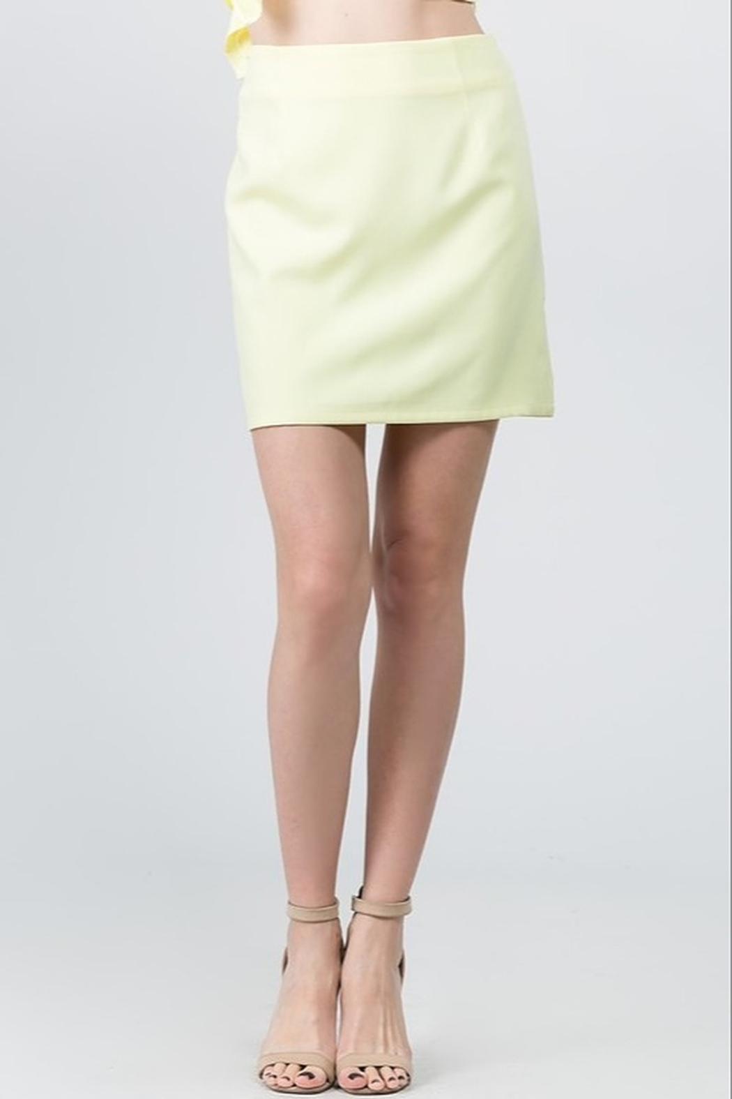 On Twelfth Solid Mini Skirt - Front Cropped Image