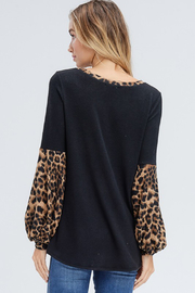 White Birch  Solid Top with Leopard Contrast Collar and Sleeves - Back cropped