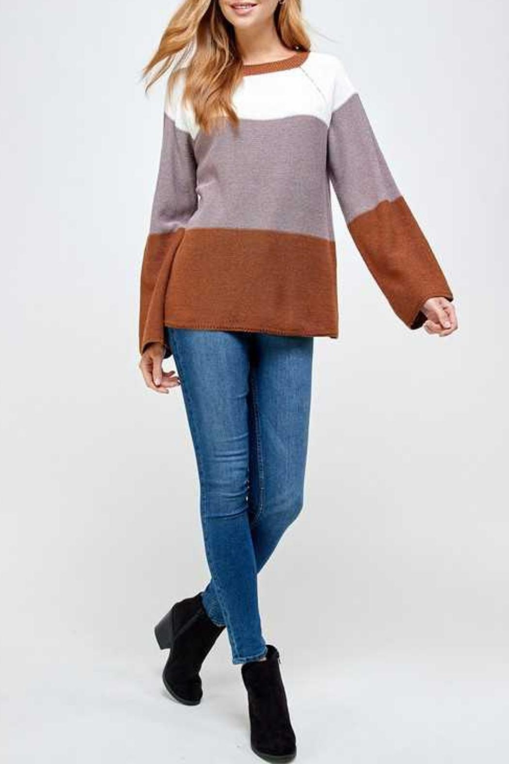 Solution Brown Colorblock Sweater - Side Cropped Image