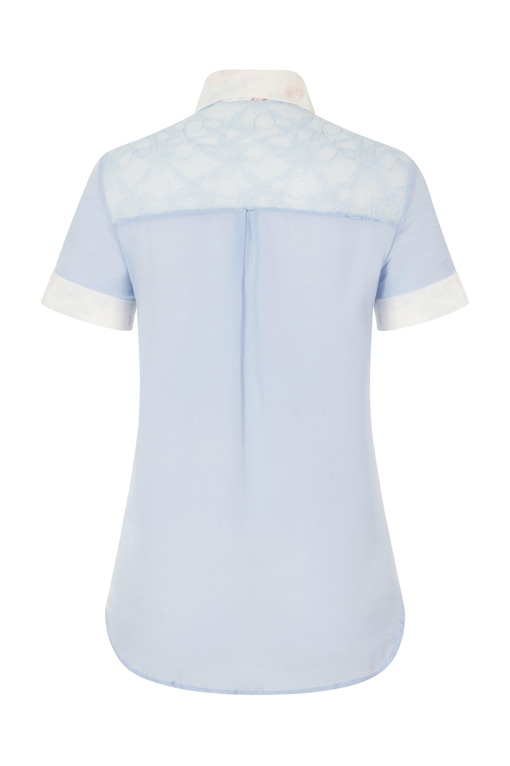Sophie Cameron Davies Classic Silk Shirt - Back Cropped Image