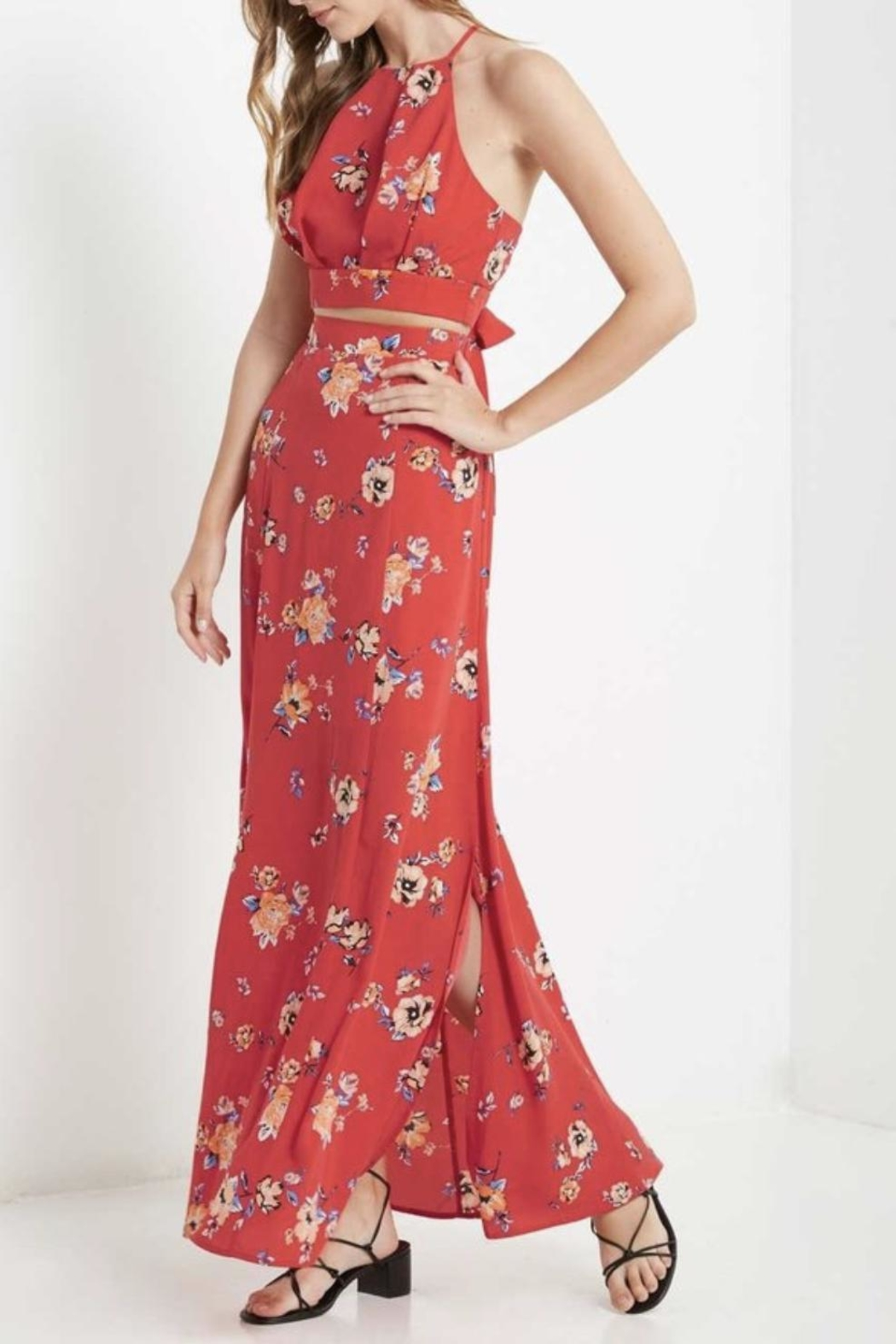 Soprano High-Waisted Maxi Skirt - Front Cropped Image