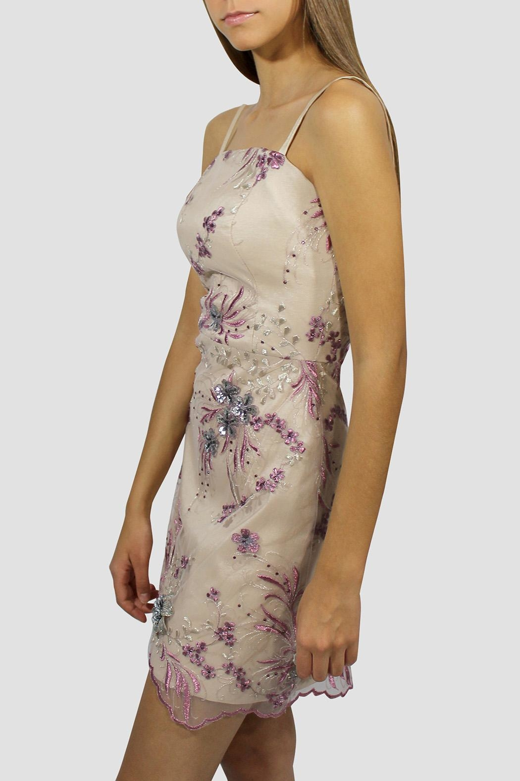 SoZu Floral Lace Sheath Dress - Front Full Image