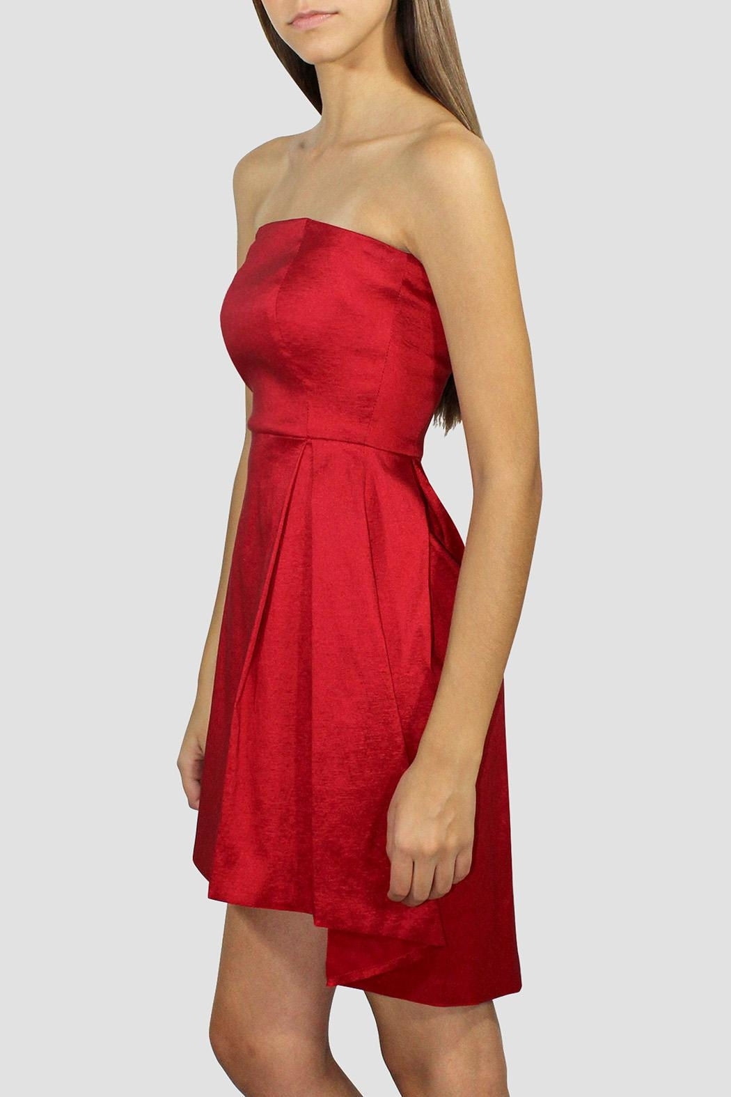 SoZu Red Strapless Dress - Front Full Image