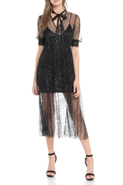 Endless Rose Sparkling Mesh Midi Dress - Product Mini Image