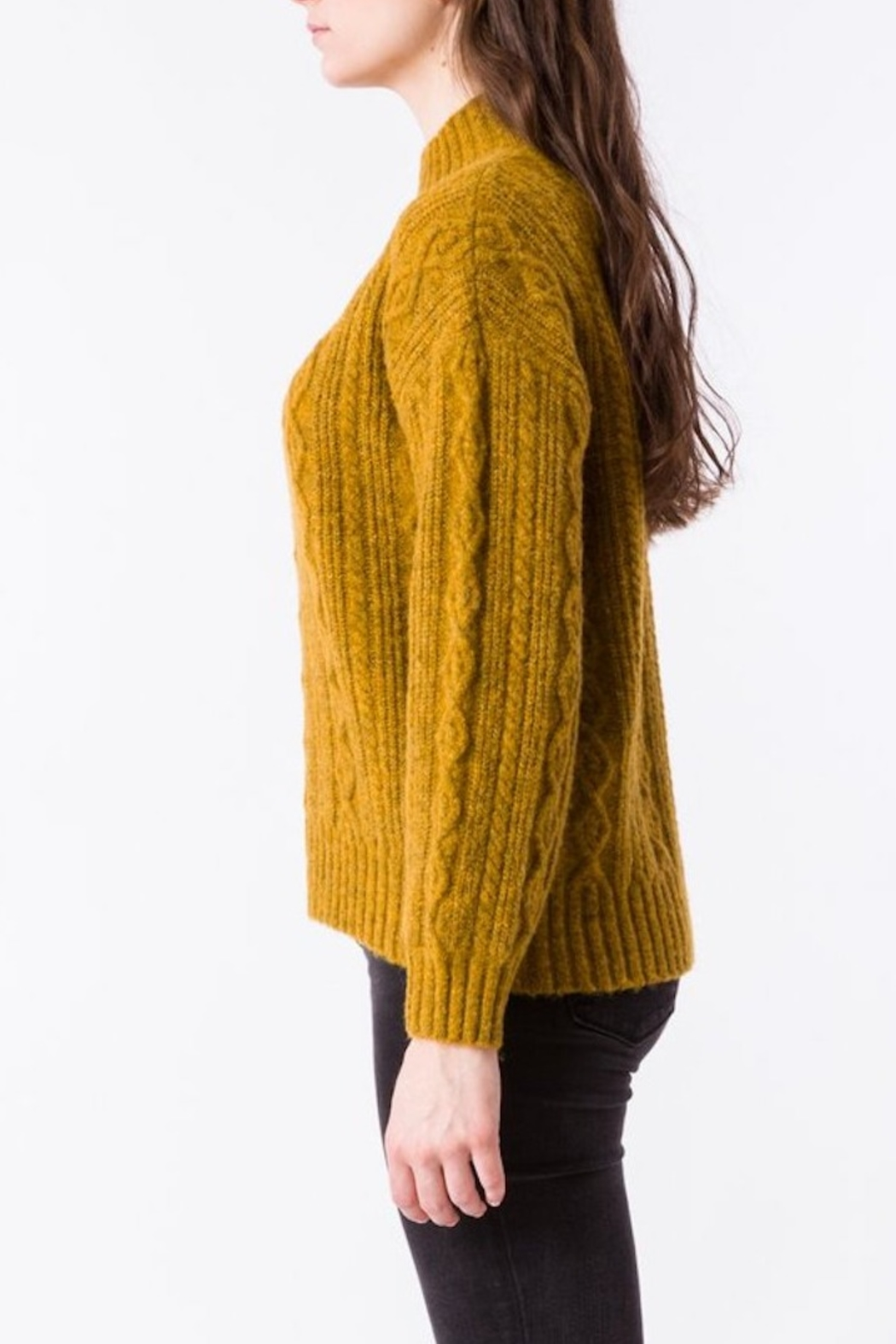 Kerisma Spice Cable-Knit Sweater - Back Cropped Image