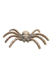 The Birch Tree Furniture Spider - Front cropped