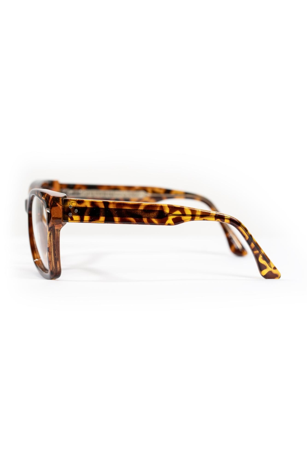 Spitfire Tortoise Clear Sunglasses - Back Cropped Image