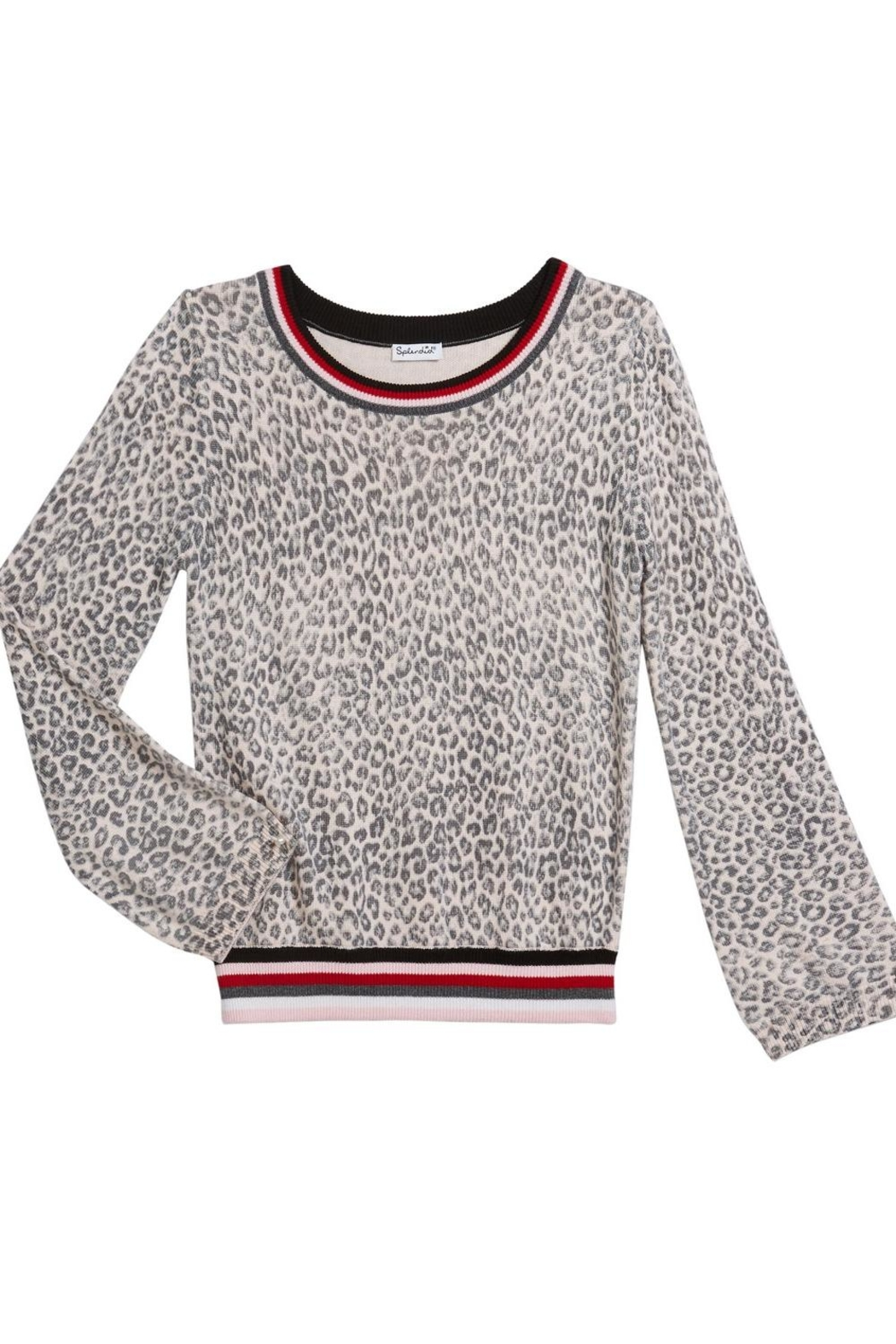 Splendid Leopard Knit - Main Image