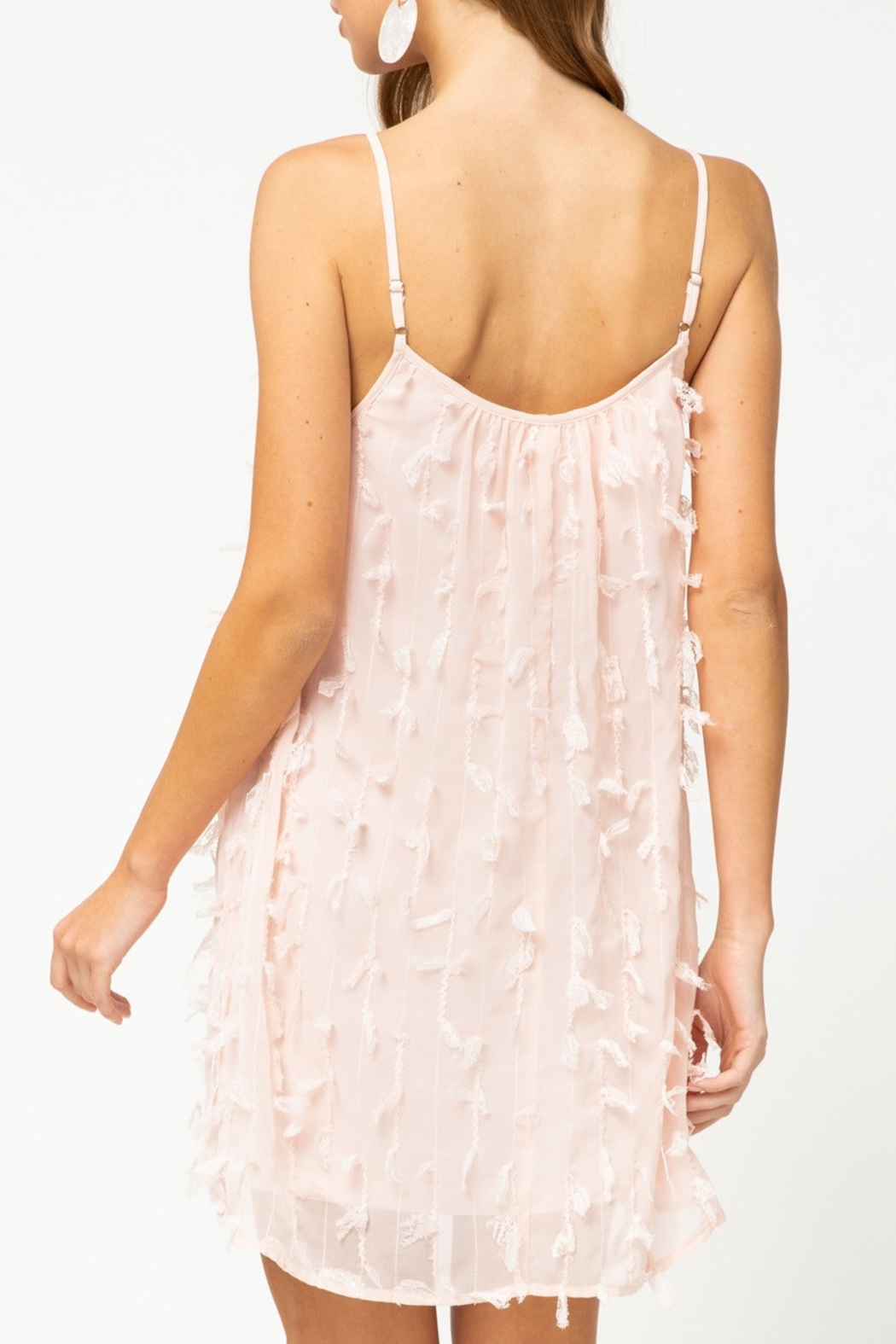 entro  Spring Frill dress - Front Full Image