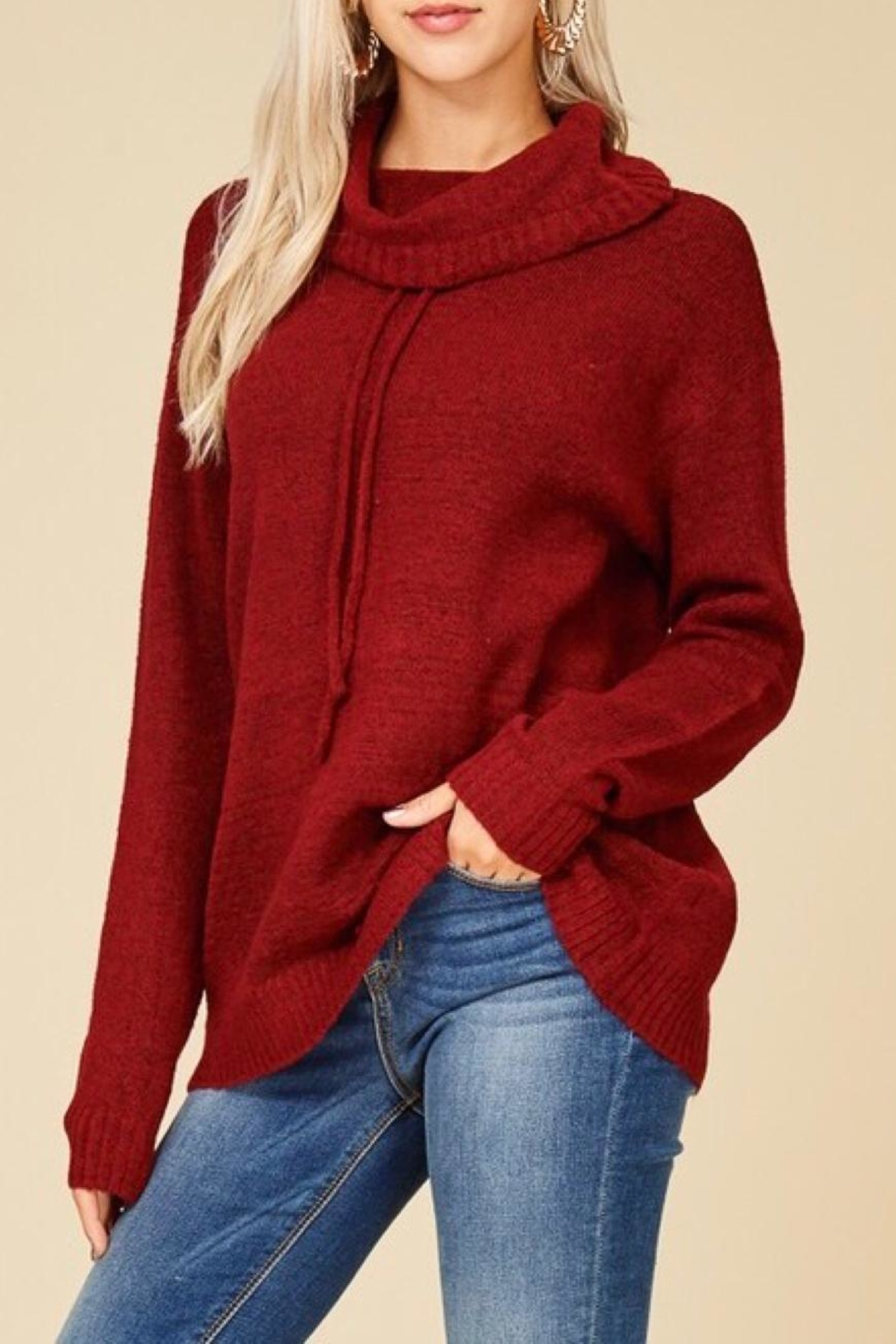 Staccato Drawstring Cowl Sweater - Front Full Image