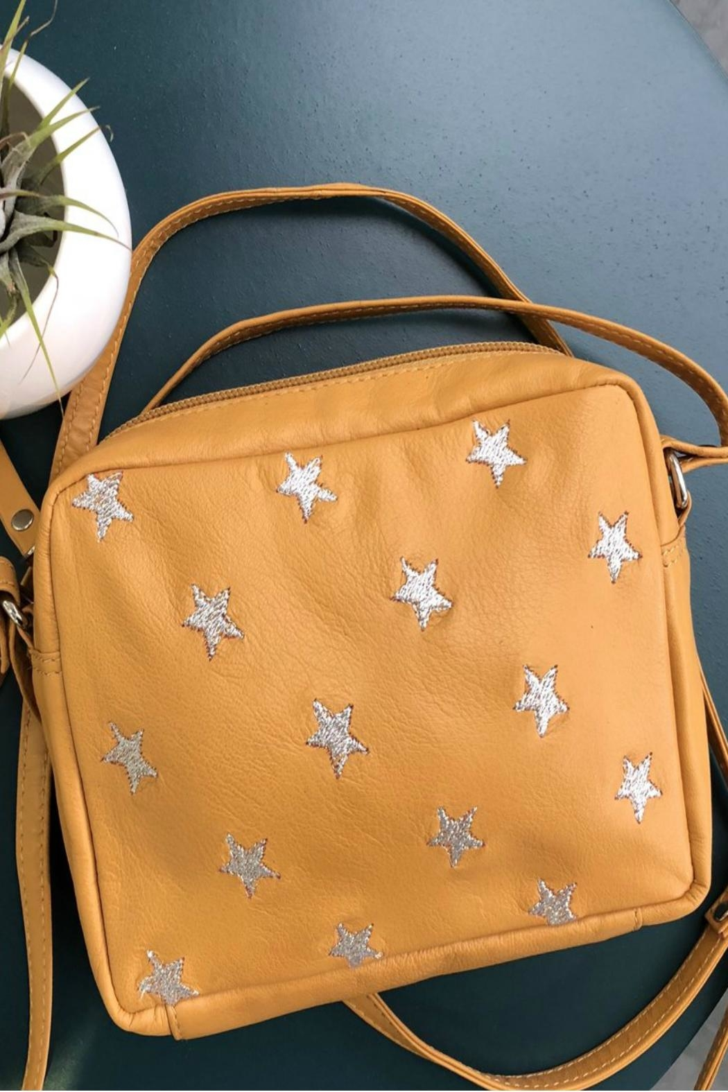 Hydestyle Star Embroidered Bags - Front Cropped Image
