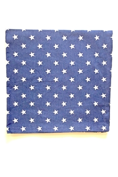 DII Design Imports Starry Cloth Napkin - Alternate List Image
