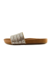 Steve Madden - Dazzle - Front cropped