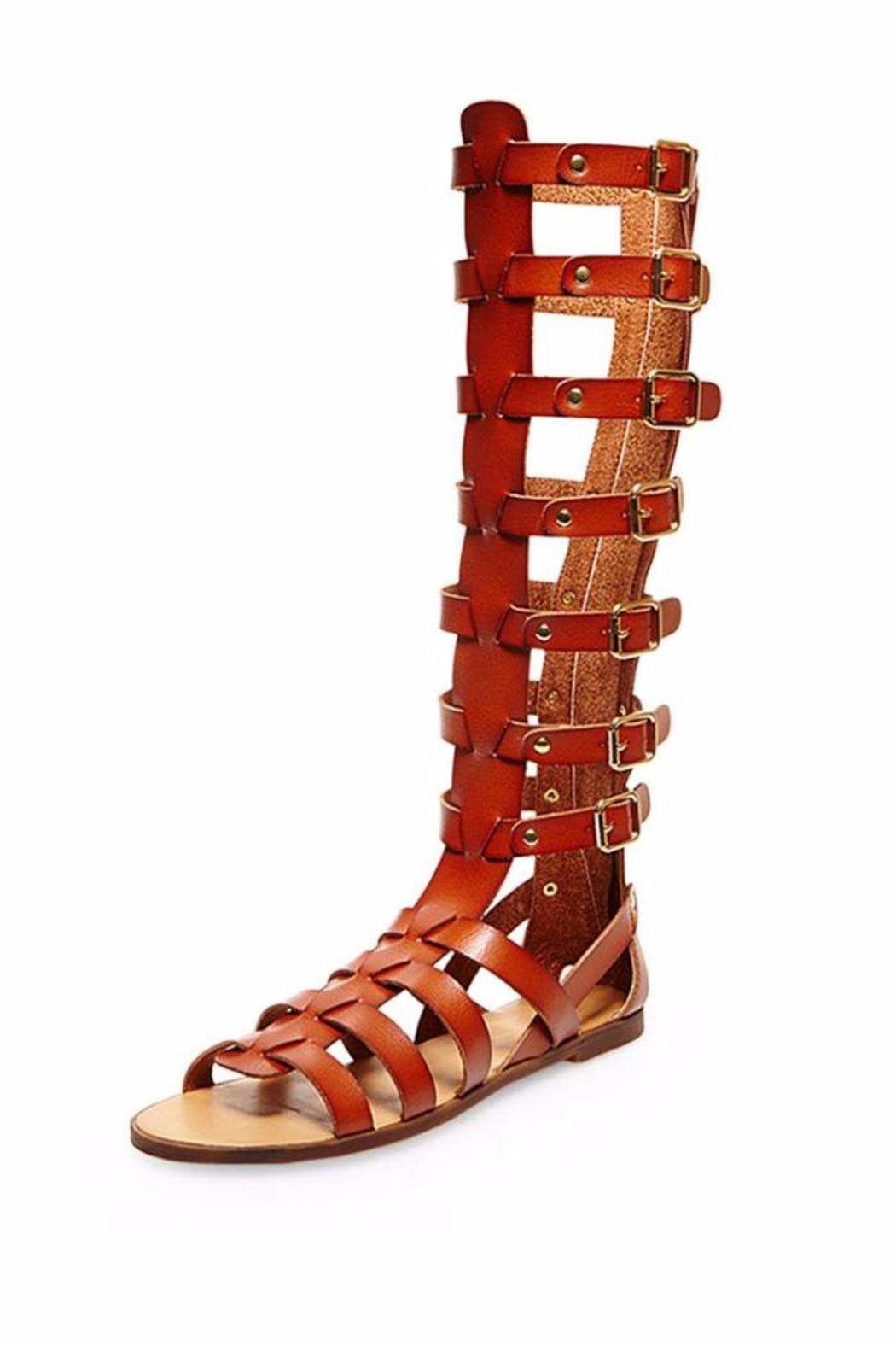 9672e47c280 Steve Madden Penna Tall Gladiator from Long Island by InMotion ...
