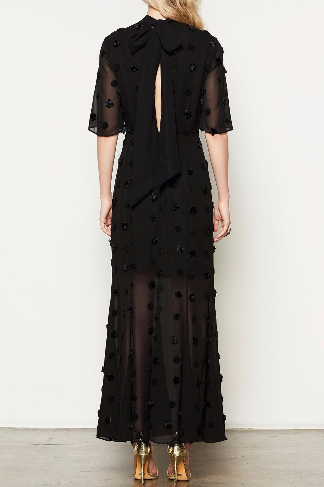 Stevie May Evolution Maxi Dress - Back Cropped Image