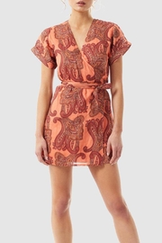 Stevie May Untitled Mini Dress - Front cropped