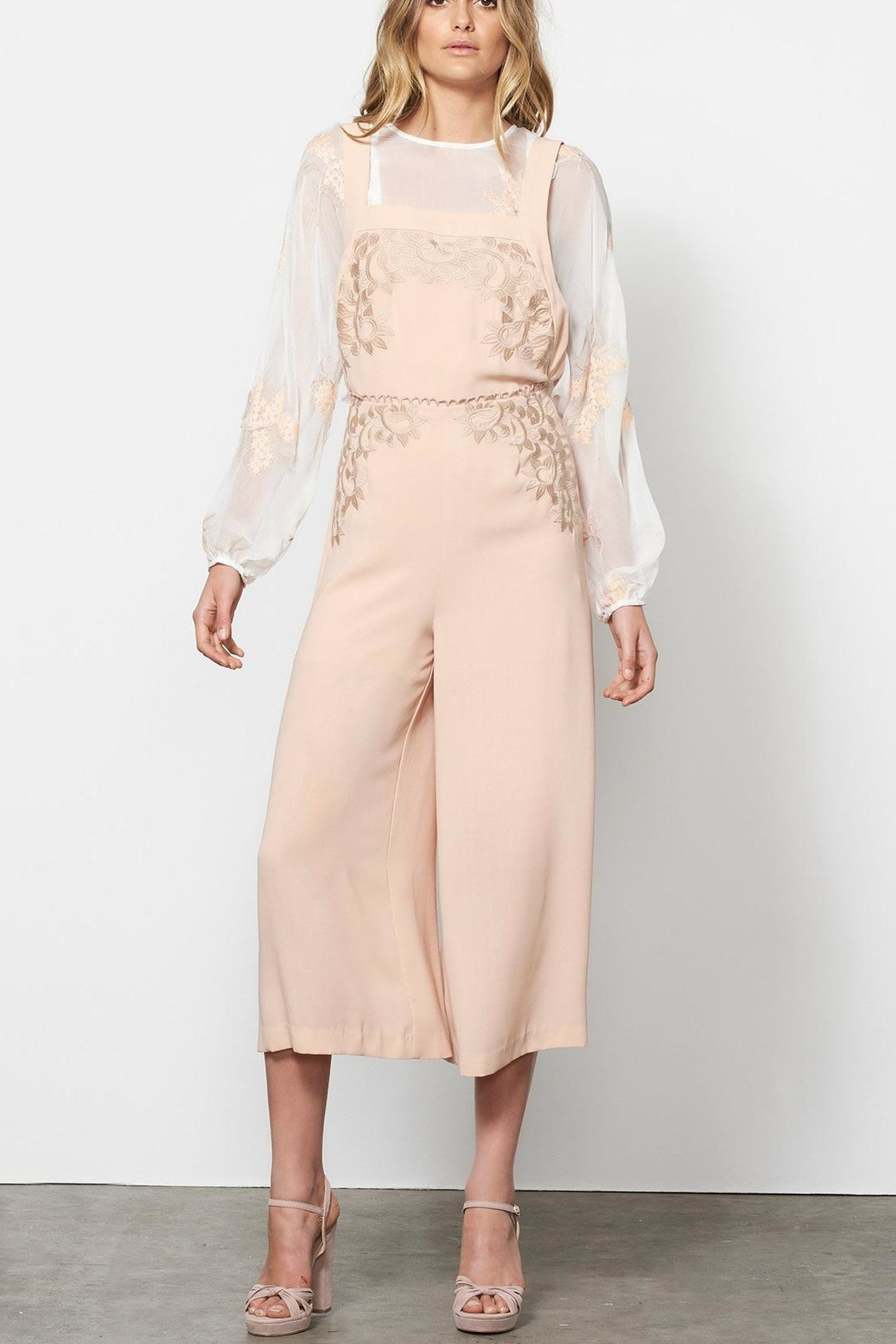 Stevie May Wide Leg Overalls - Back Cropped Image