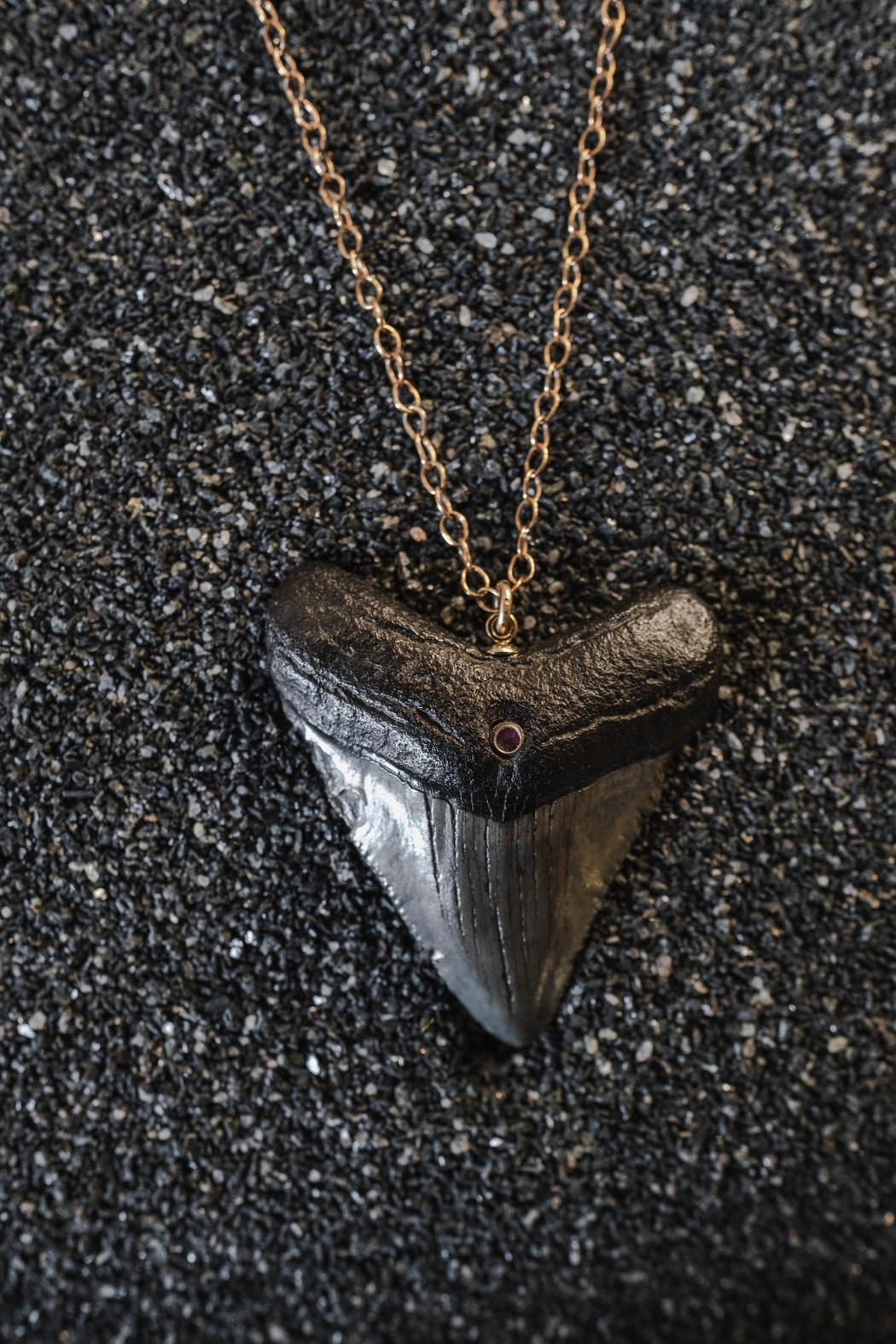 Sticks & Stones Accessories Megalodon Sapphire Necklace - Main Image