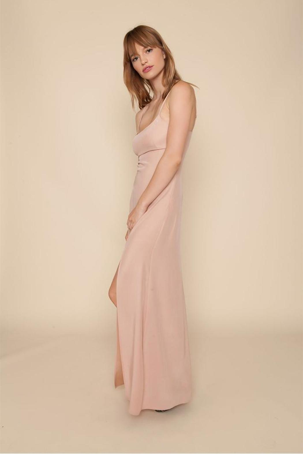 Stone Cold Fox Christy Gown Dusty Rose from California by Brigitte ...
