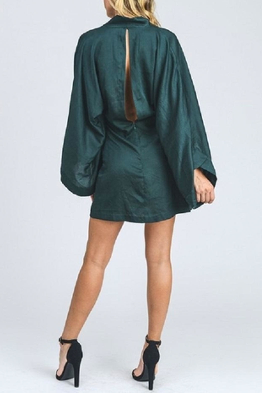 storia Bell Sleeve Dress - Back Cropped Image