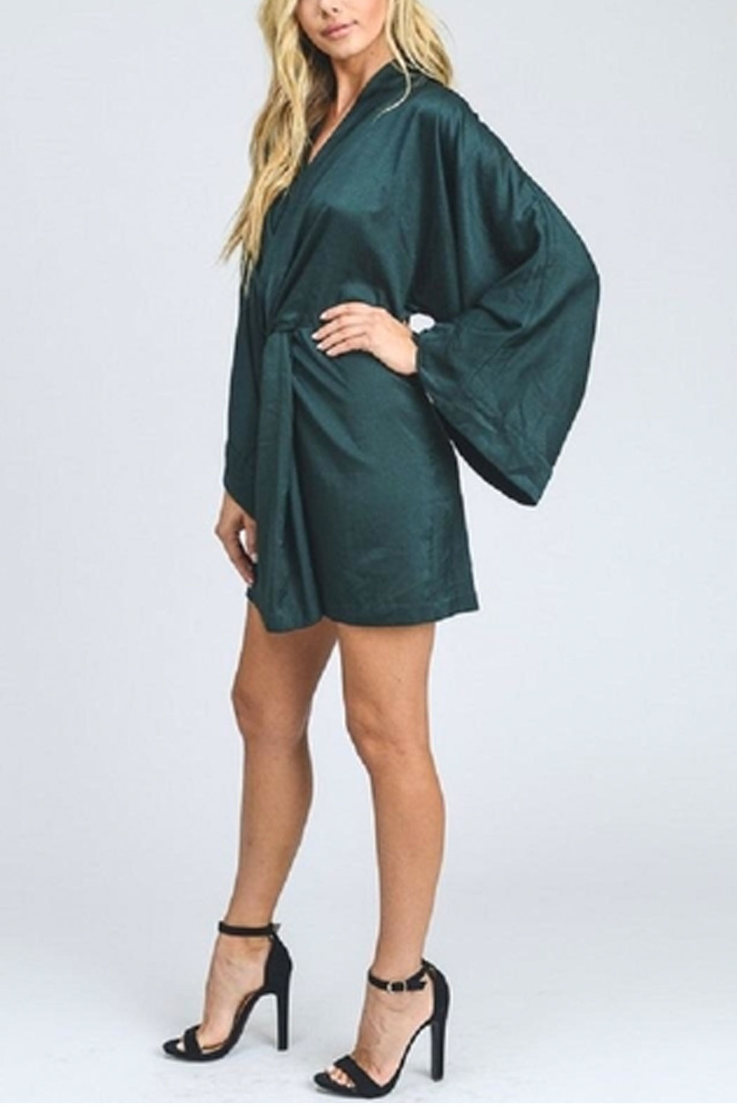 storia Bell Sleeve Dress - Side Cropped Image