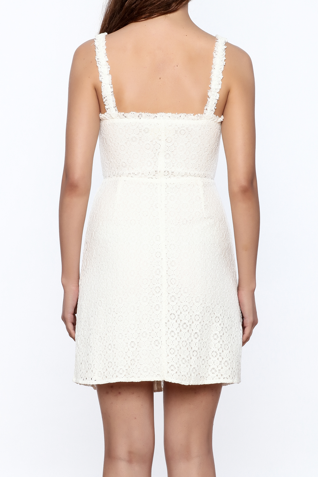 storia Crochet Dress - Back Cropped Image