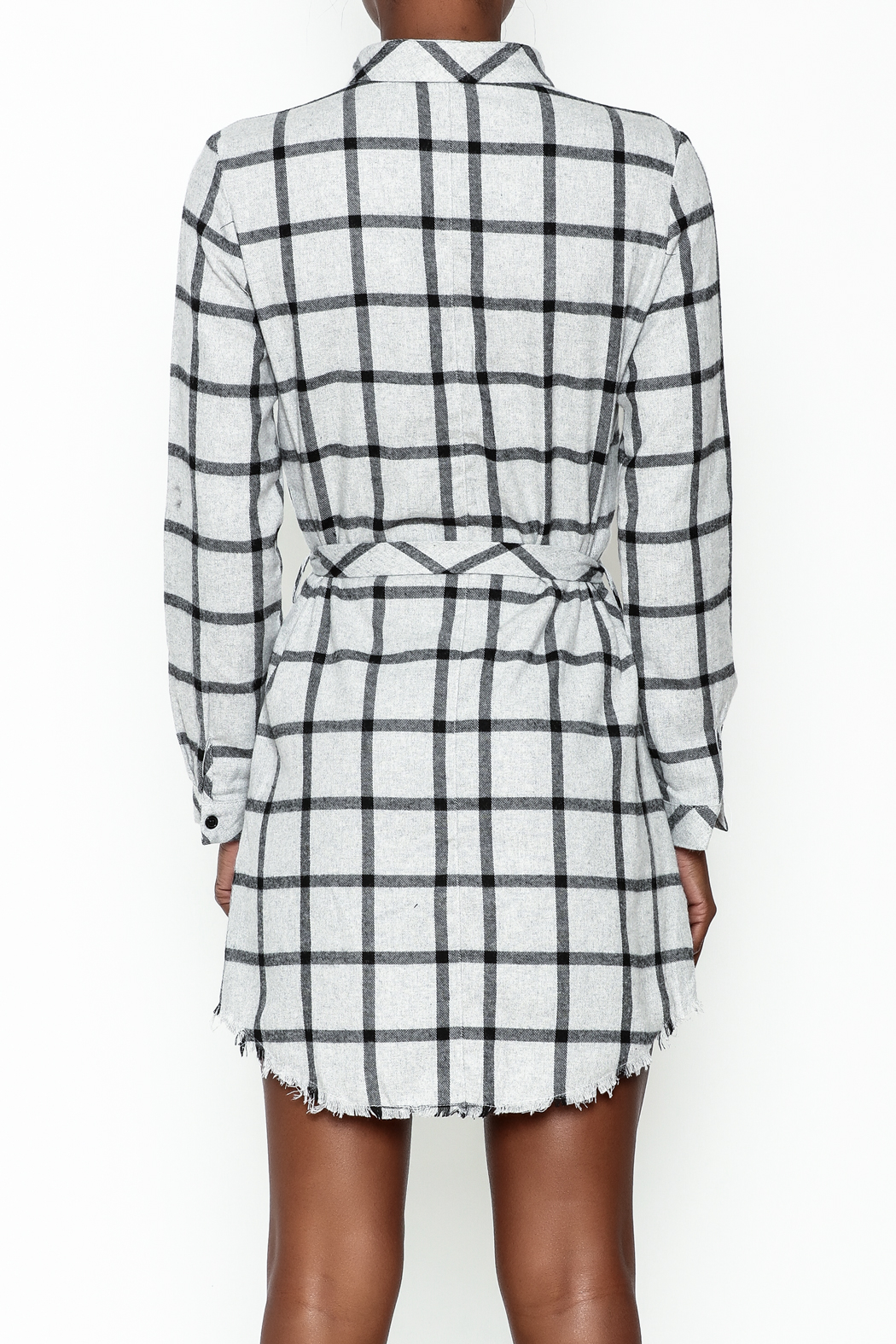 storia Plaid Collared Dress - Back Cropped Image