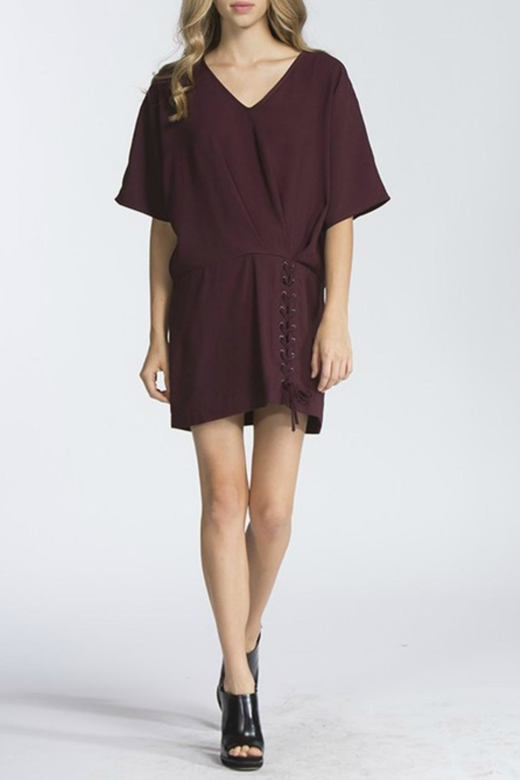 storia Plum Tunic Dress - Front Cropped Image