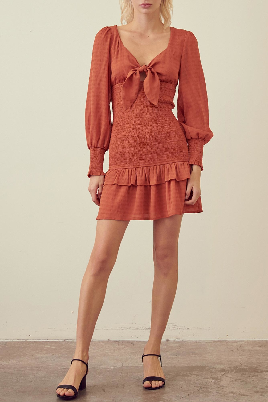storia Rust Smocked Dress - Main Image