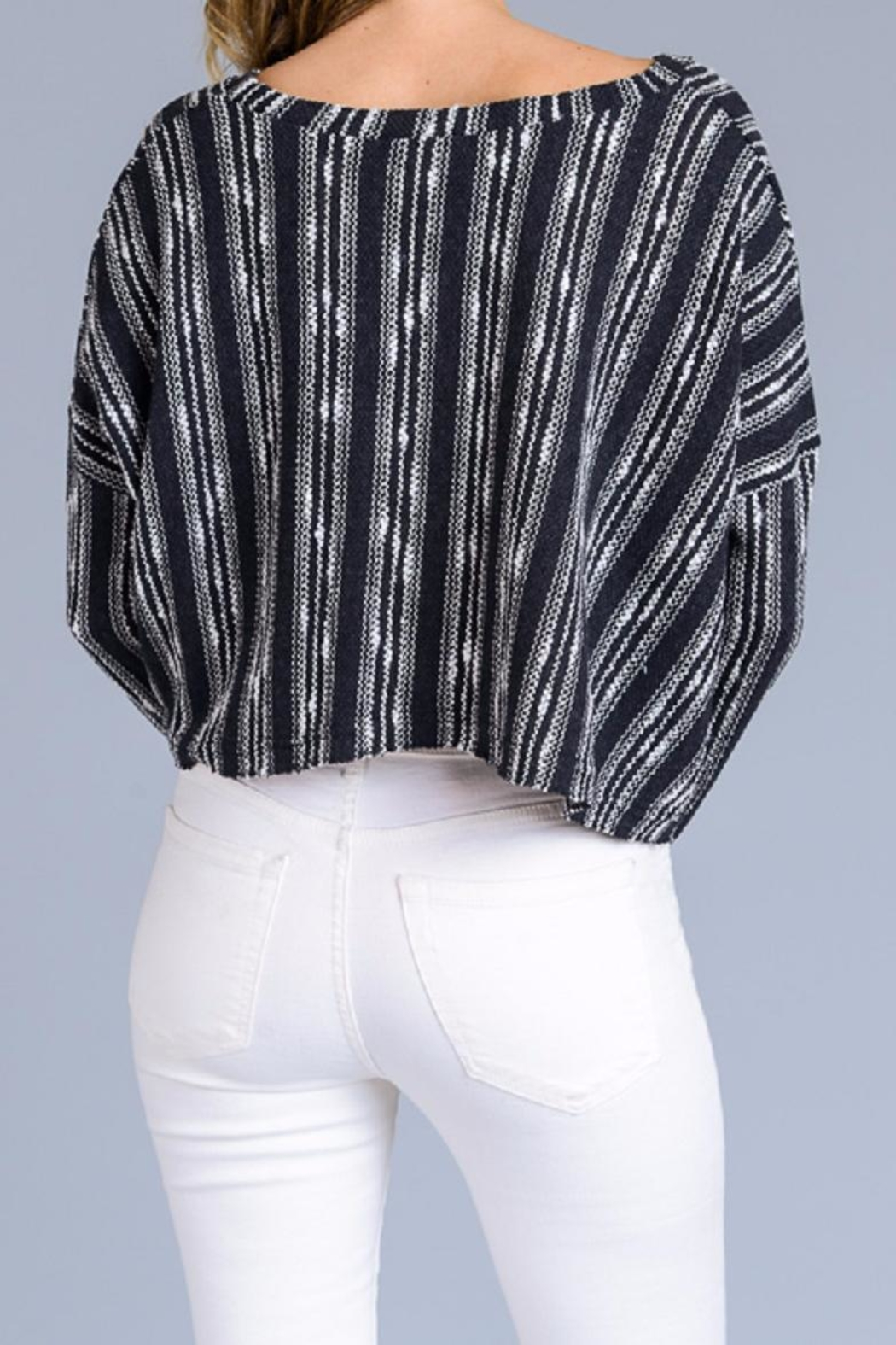 storia Stripe Crop Sweater - Back Cropped Image