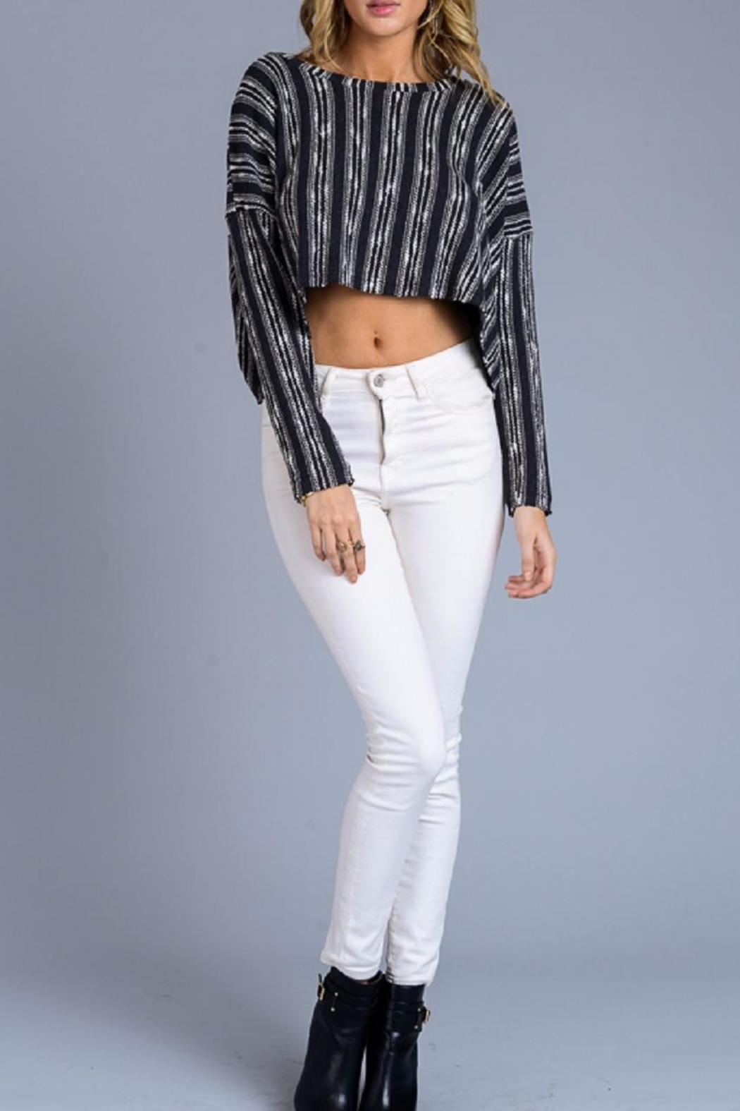 storia Stripe Crop Sweater - Main Image