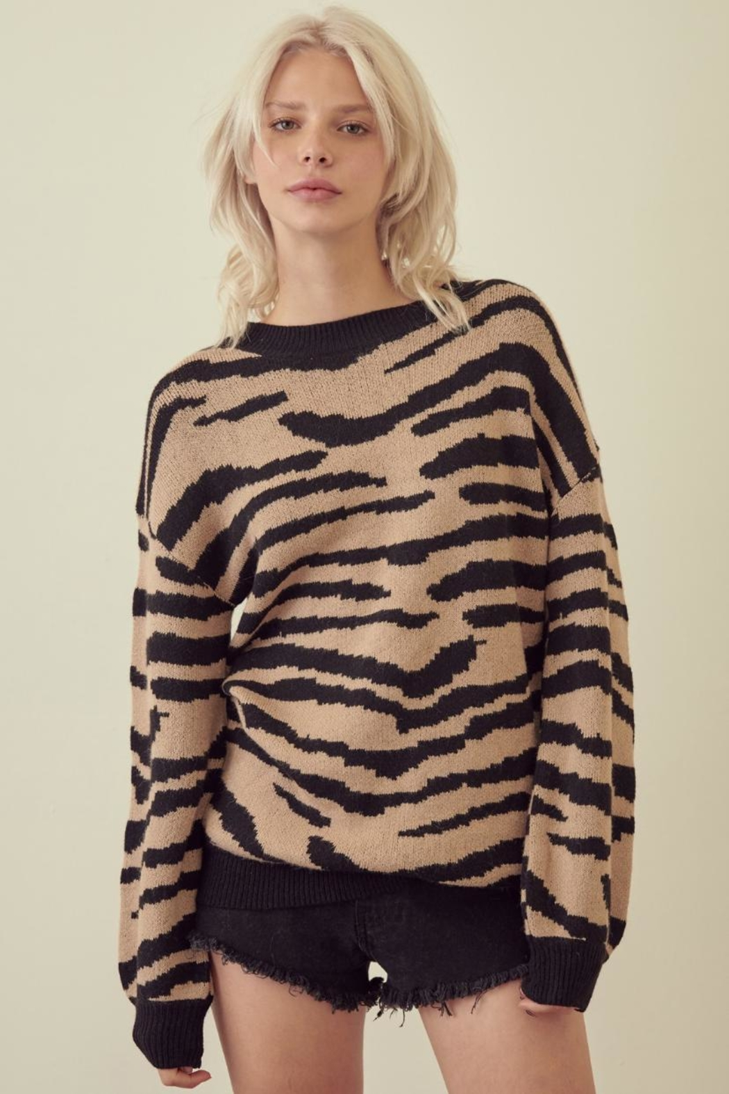 storia Zebra Print Sweater - Front Cropped Image