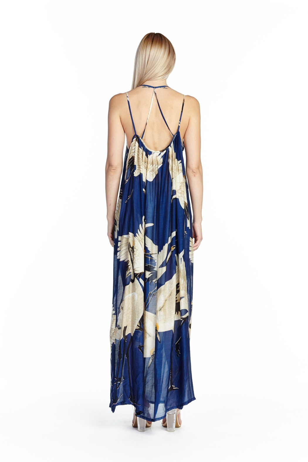 Aratta Story of the Blue Maxi Dress - Front Full Image