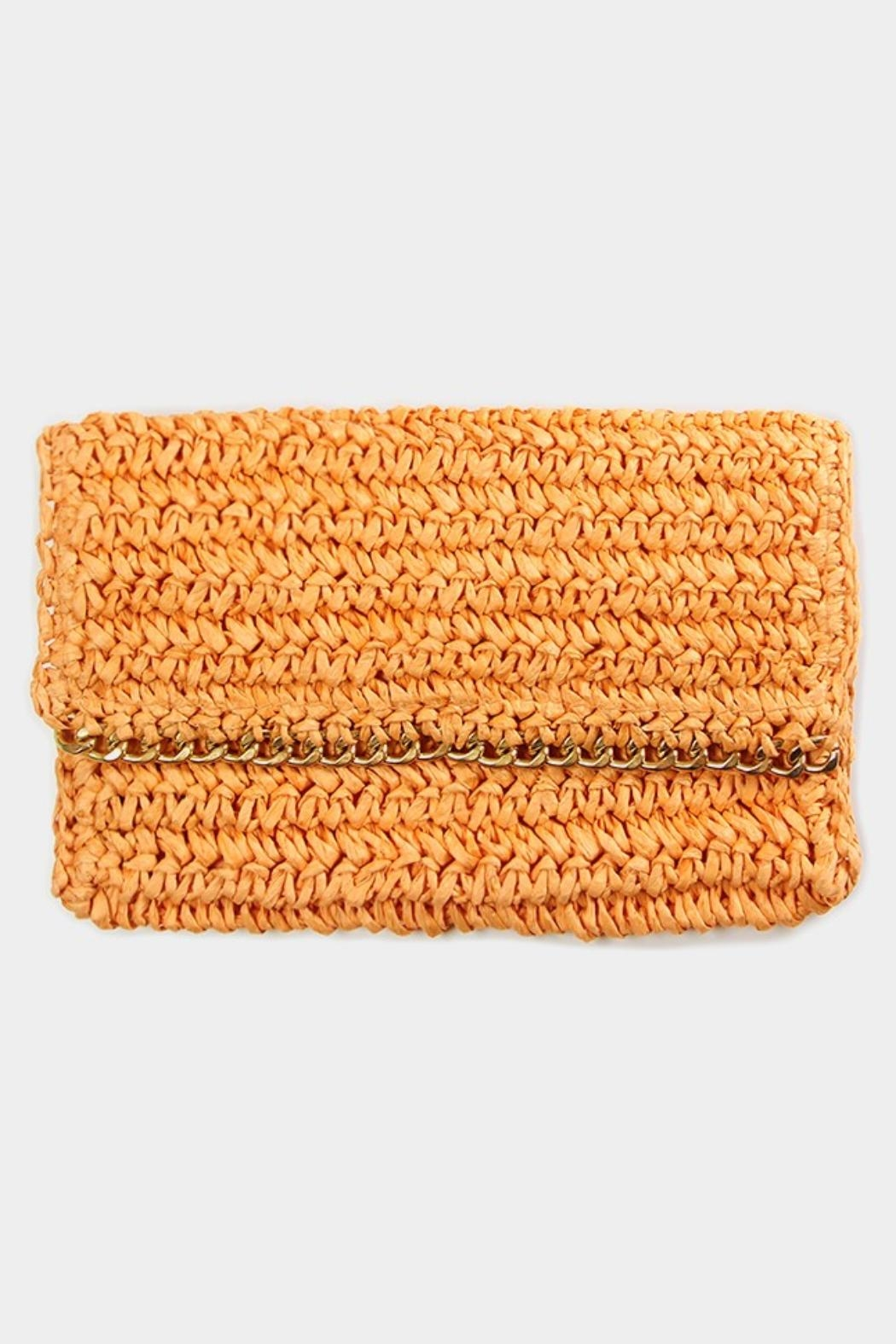 Embellish Straw Chain Clutch - Front Cropped Image