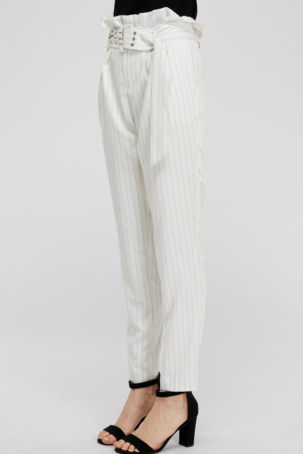 The Sang Stripe Belted Pants - Side Cropped Image