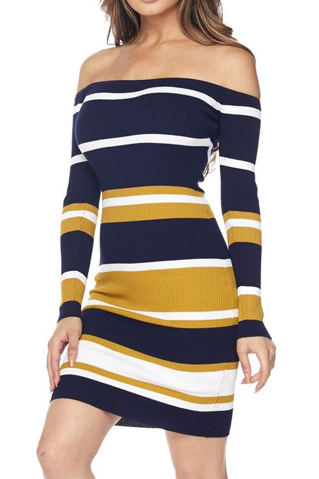 hera collection Stripe Bodycon Dress - Front Full Image