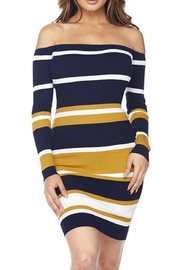 hera collection Stripe Bodycon Dress - Front cropped